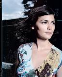 Audrey Tautou Need a decent pic.... Foto 45 (���� ���� ����� ��������� ��� .... ���� 45)
