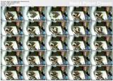 http://img142.imagevenue.com/loc558/th_88907_HiddenCamMasturbationCameratop.avi_thumbs_2013.06.19_02.08.09_123_558lo.jpg
