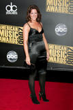 *ADDS* Sarah McLachlan @ 2008 American Music Awards - Arrivals, Los Angeles - November 23